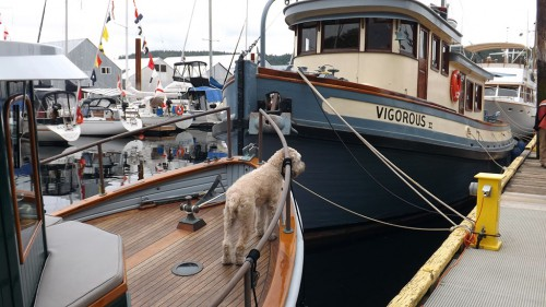 Heritage Boat Day