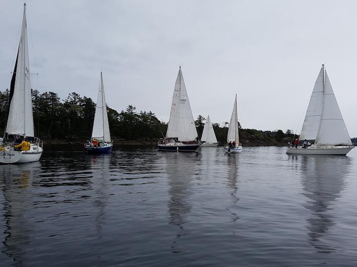 Sail the RHUMB!